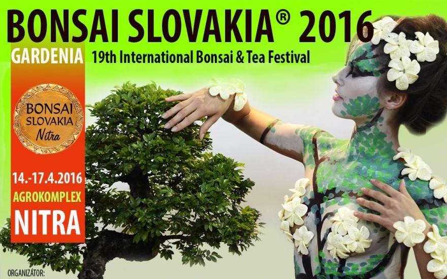 bonsai_slovakia_2016